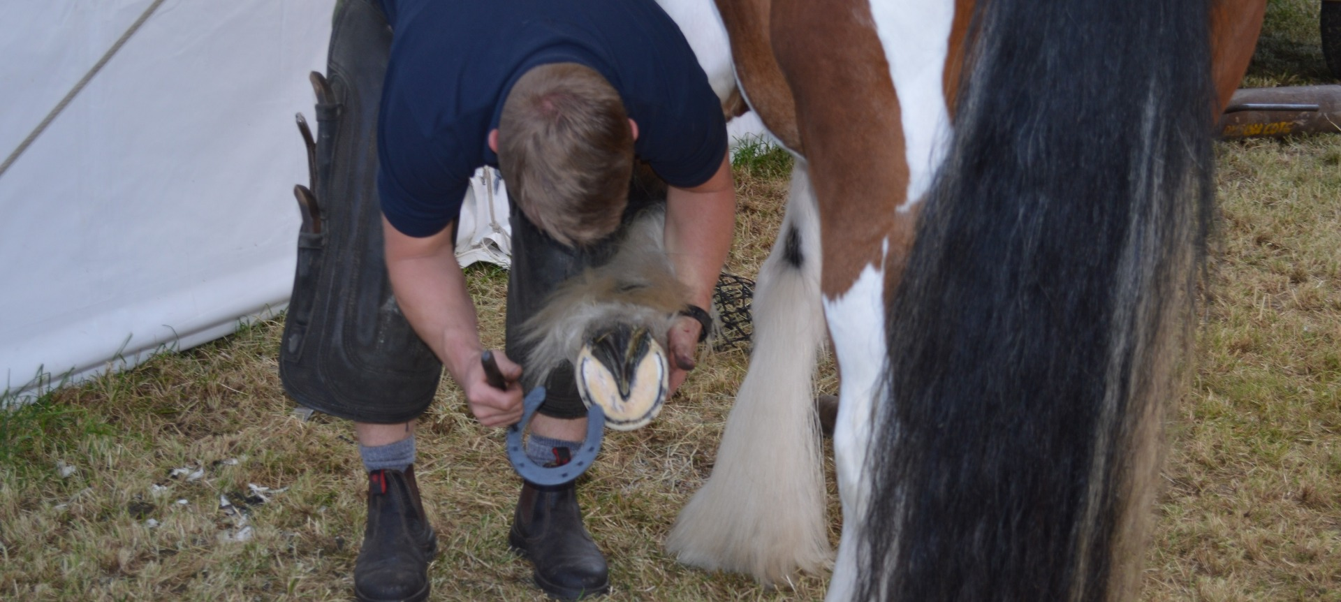 Dan Lowe Friday on the Farm